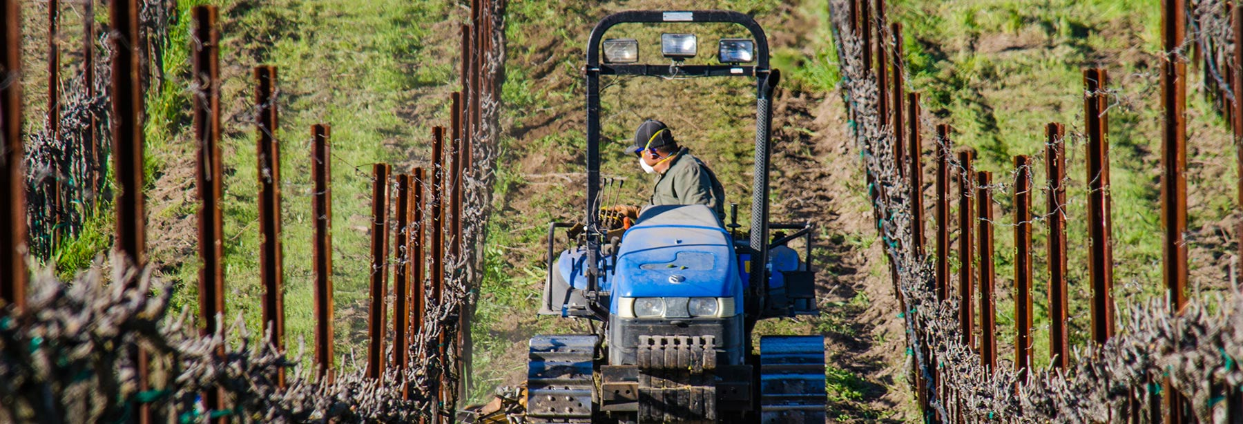Vineyard Professional Services Photo
