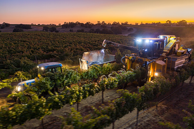 Paso Robles Mechanical Harvesting